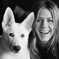 Jennifer Aniston's pet Dolly