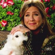 Jennifer Aniston's pet Norman