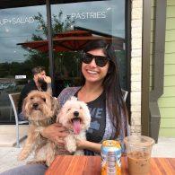 Mia Khalifa's pet Two Terrier Mixes