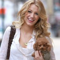 Blake Lively's pet Penny