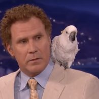 Will Ferrell's pet Professor Don Feathers