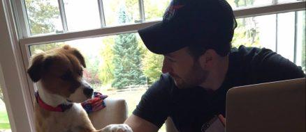 Chris Evans' dog Dodger serenades him with the Lion King soundtrack