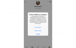 instagram animal protection