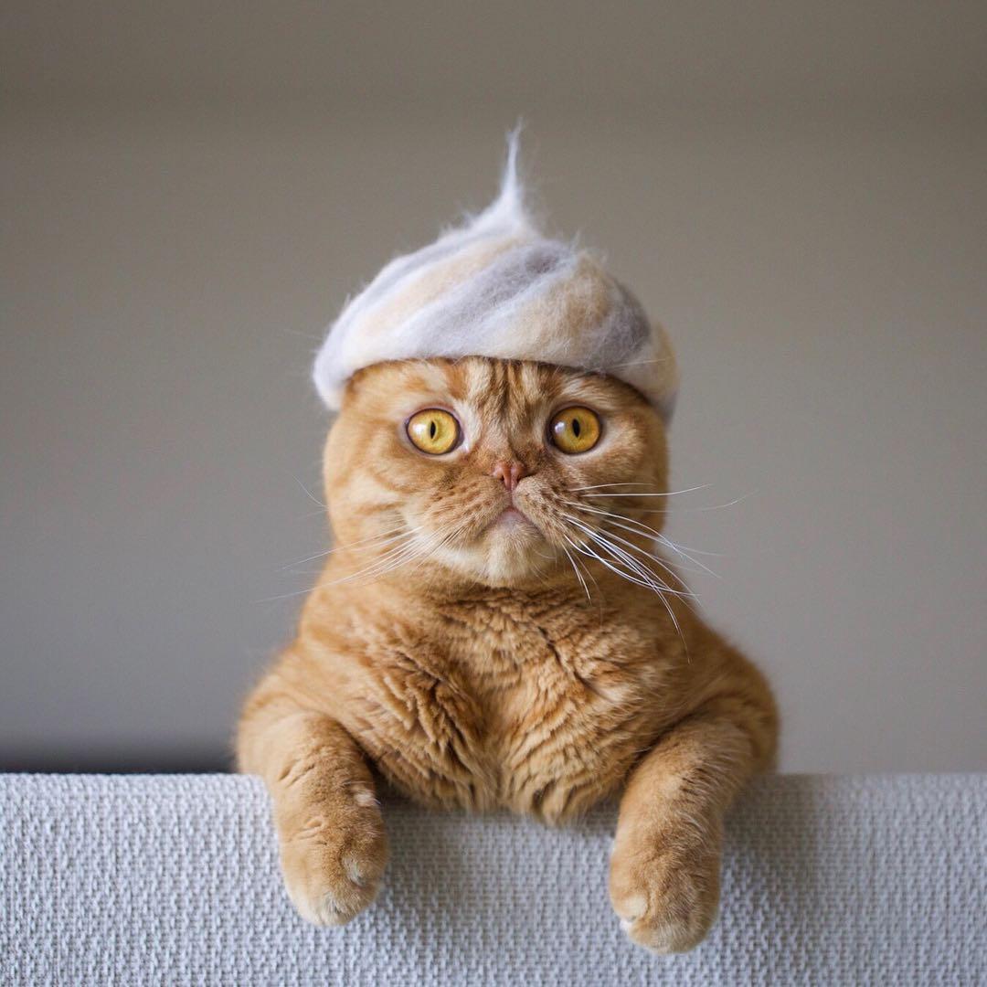 rojiman cats fur hat
