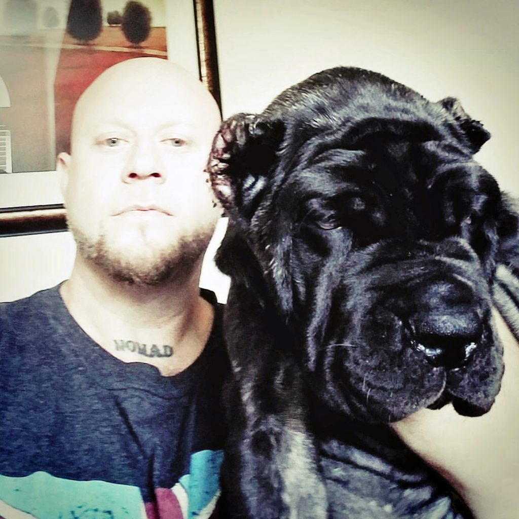 worlds biggest dog