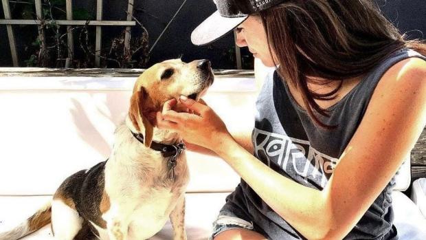 meghan markle guy beagle