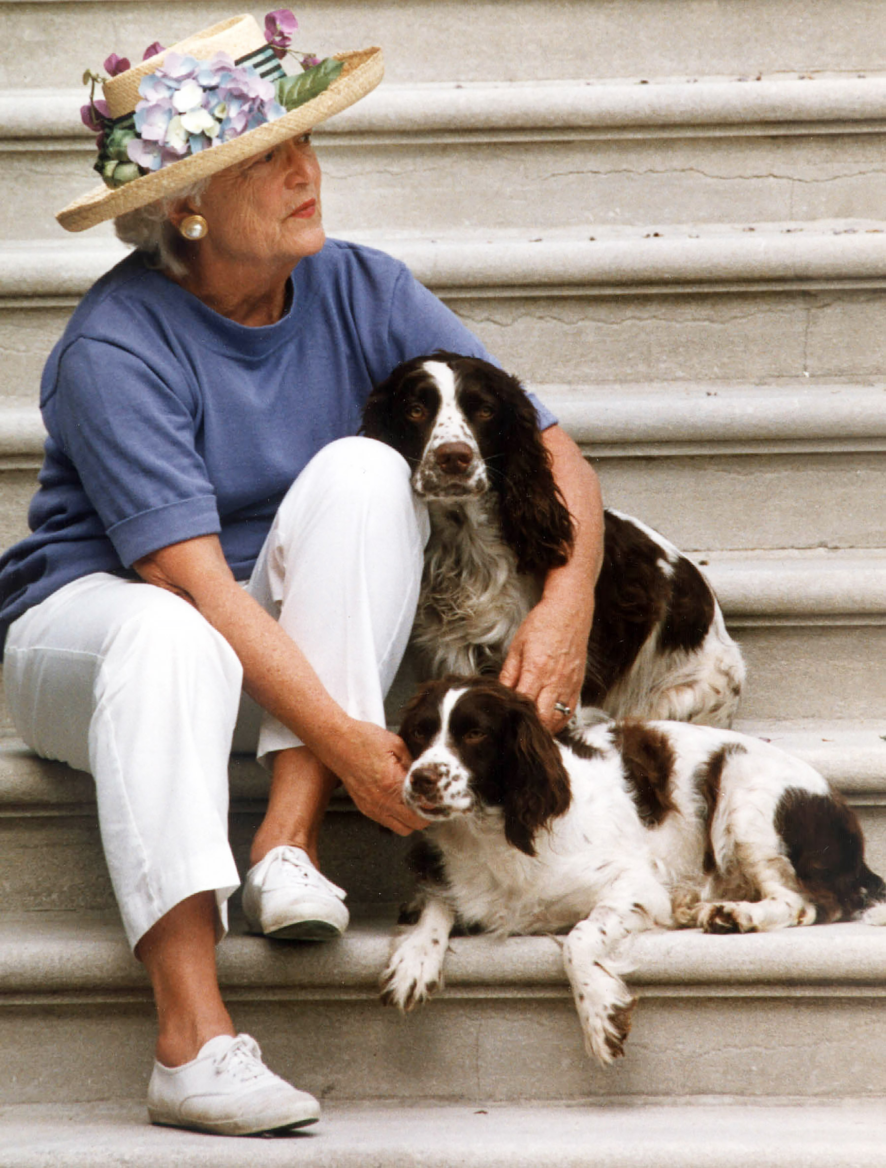 barbara george bush spaniel