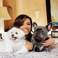 Eva Longoria's pet Popeye
