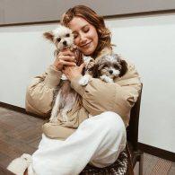 Ashley Tisdale's pet Ziggy and Sushi