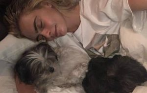 Cara Delevingne with dogs Olivia and Walter