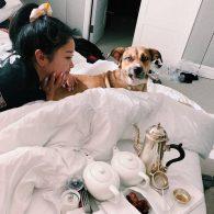 Lana Condor's pet Emmy