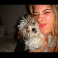 Ashley Benson's pet Olivia