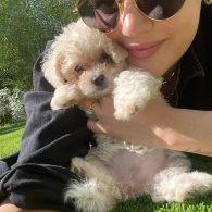 Selena Gomez's pet Daisy