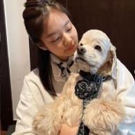 Jennie Kim's pet Kai