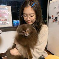 Jennie Kim's pet Kuma